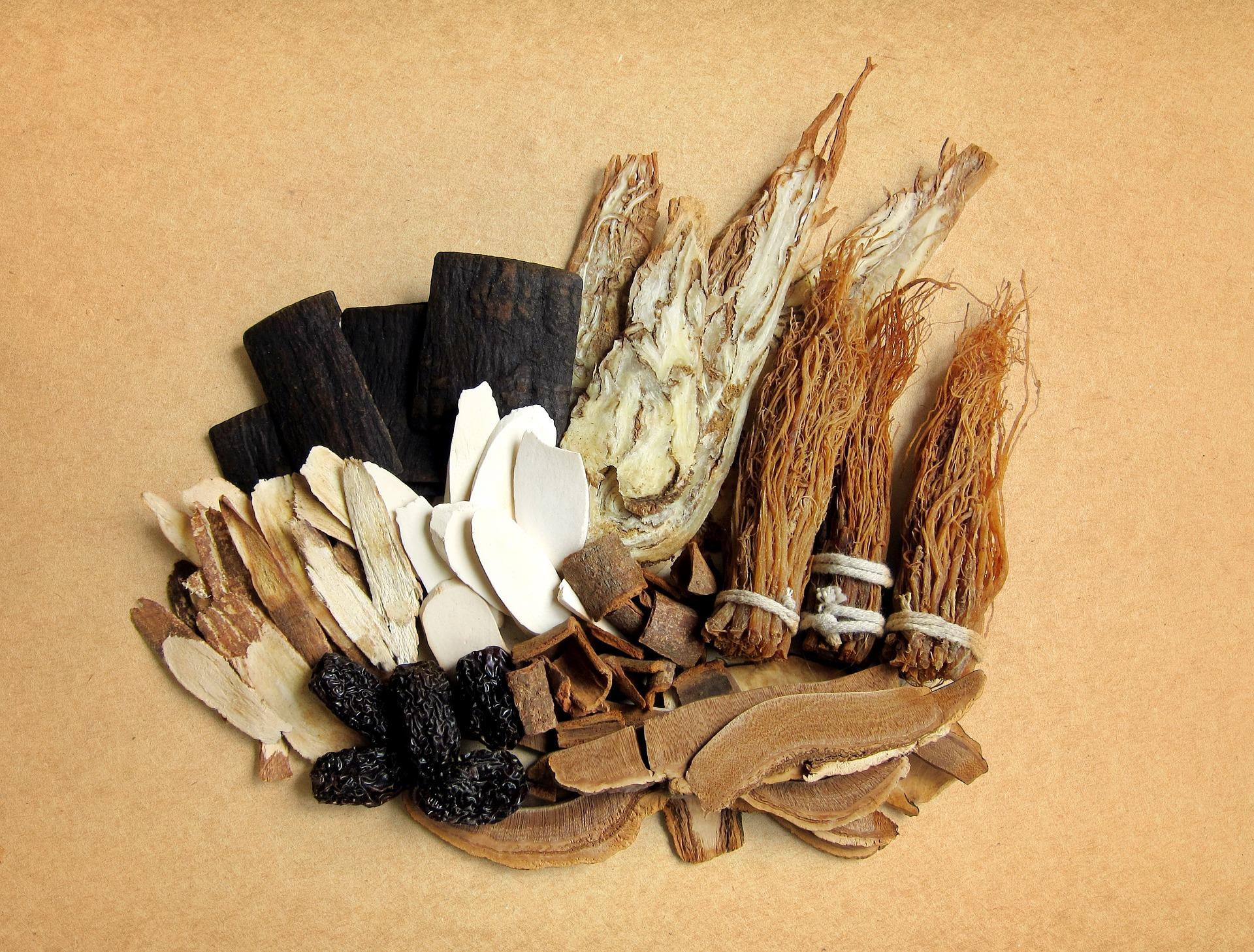 Fütterung Traditionelle Chinesische Medizin Pferd