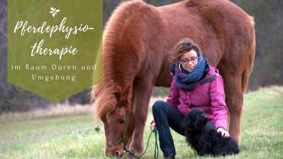 Pferdephysiotherapie Düren Christina Schumann