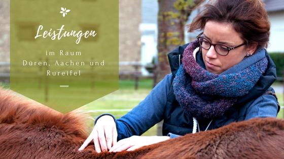 Pferdephysiotherapie Christina Schumann Angebot Leistungen