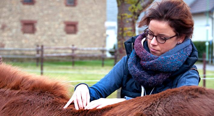 Pferdephysiotherapie Düren