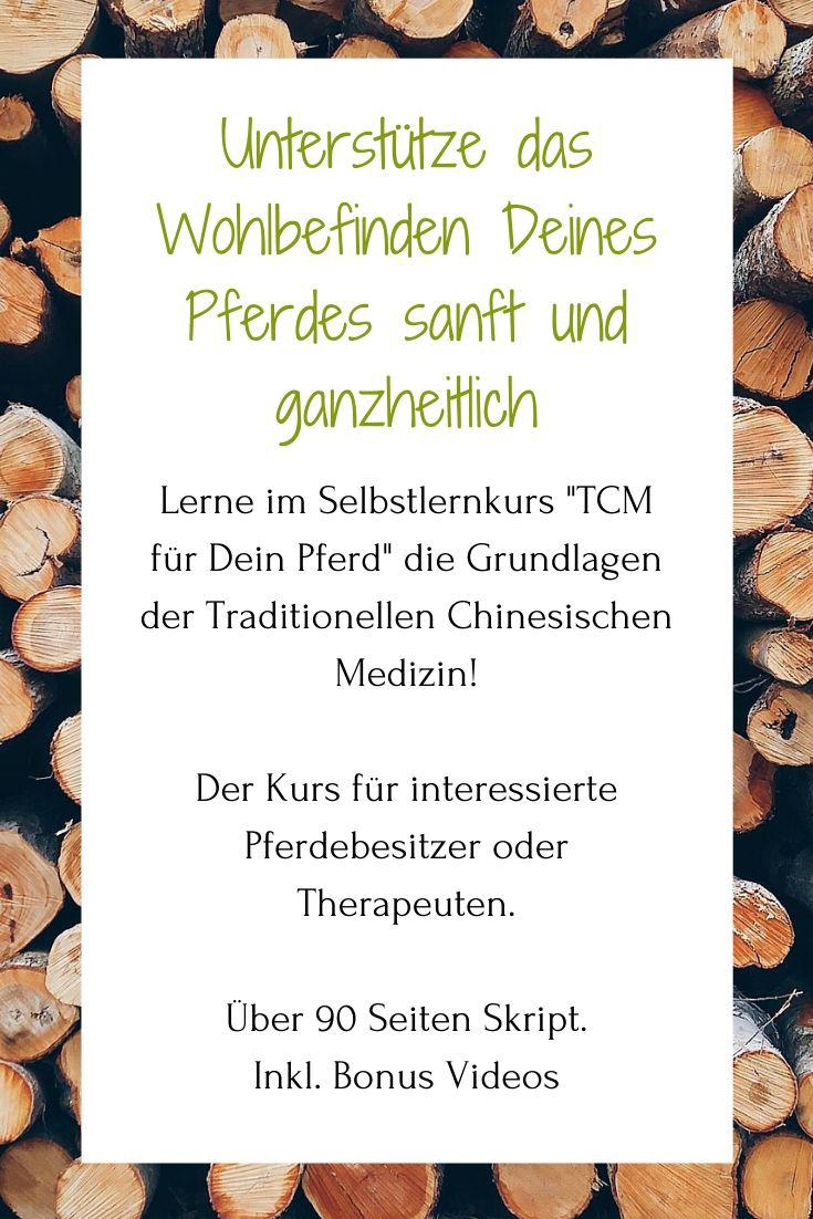 Onlinekurs Pferd Traditionelle Chinesische Medizin TCM